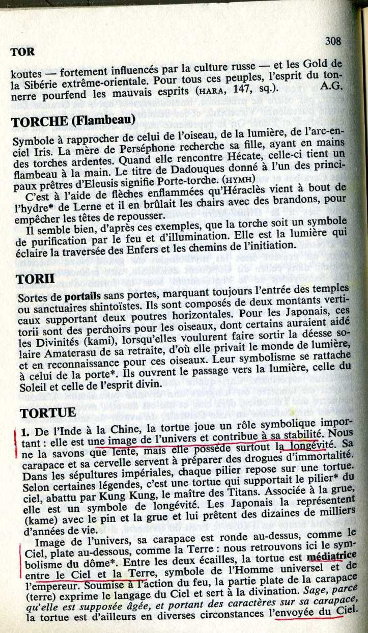 TORTUE2667